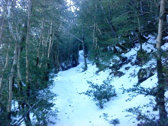 La partie en neige