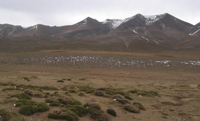 plateau Tarkeddit - M'Goun