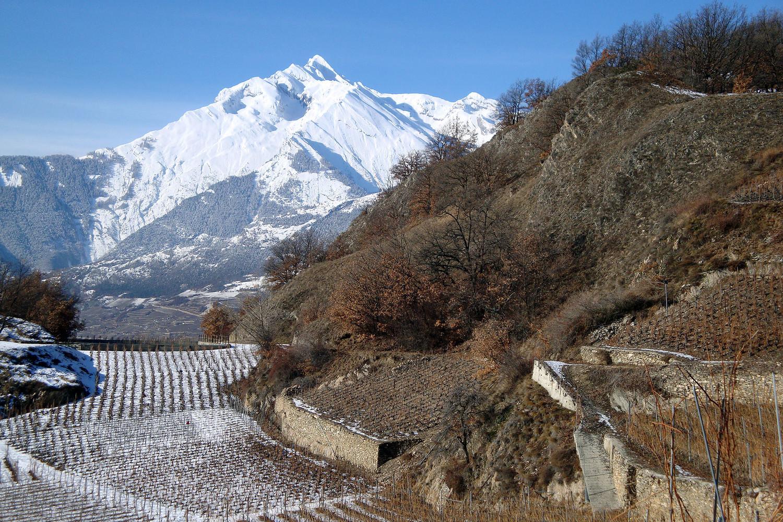 Mont d'Orge ; vue sur Haut de Cry