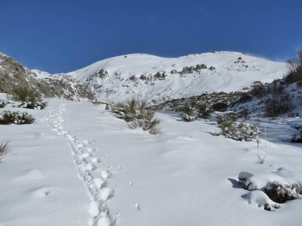 pic de st Barthelemy depuis le plateau à 1600 m