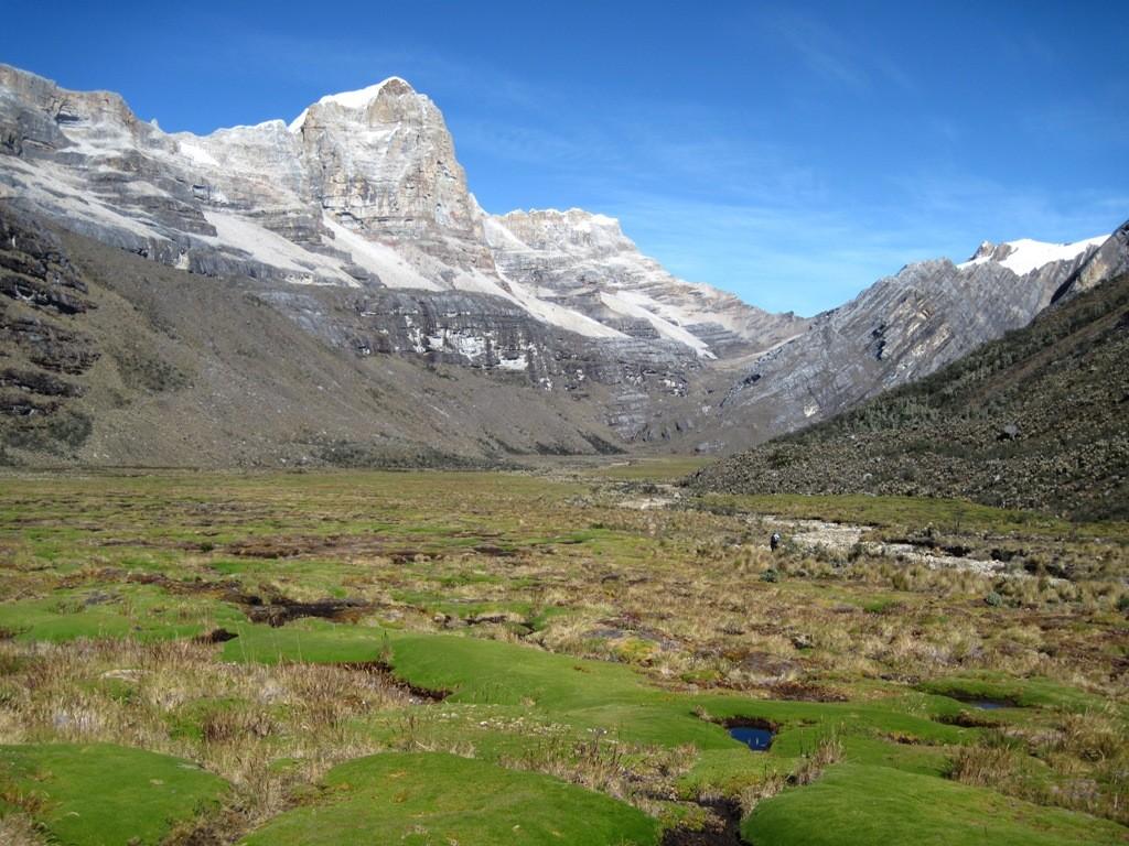 La Valle de los Cojines: tourbière à coussins à 4200 m