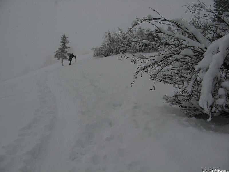 Après le passage en forêt, belle neige sur fond dur
