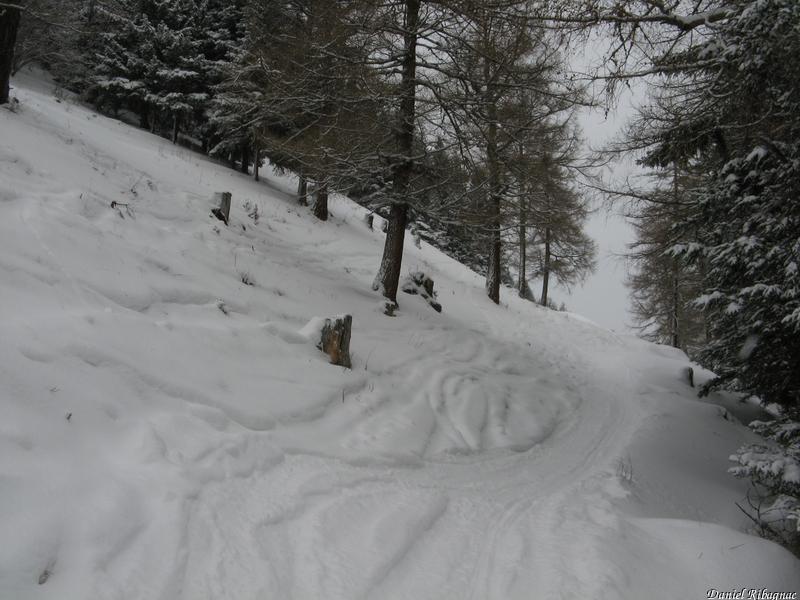 Sur le chemin d'été pour Les Planeys, 20cm de neige, pas de fond
