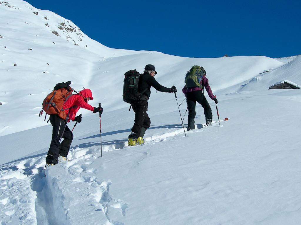 3 compagnons de course qui brassent la neige...