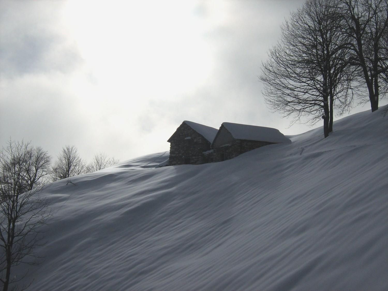 Alpe Crogiolo