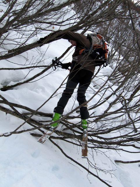 Loïc a testé pour vous : l'acro-ski-branches !