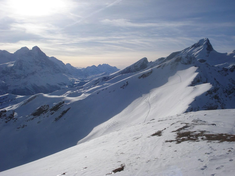 Sommet du Grindelgrat : Mönsch (4107m) et Eiger (3970m) à gauche, Schwarzhoren à droite