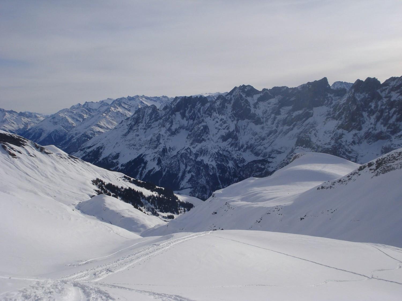 Vue sur la vallée Rosenlauital, dominée par l'Hengelhörner