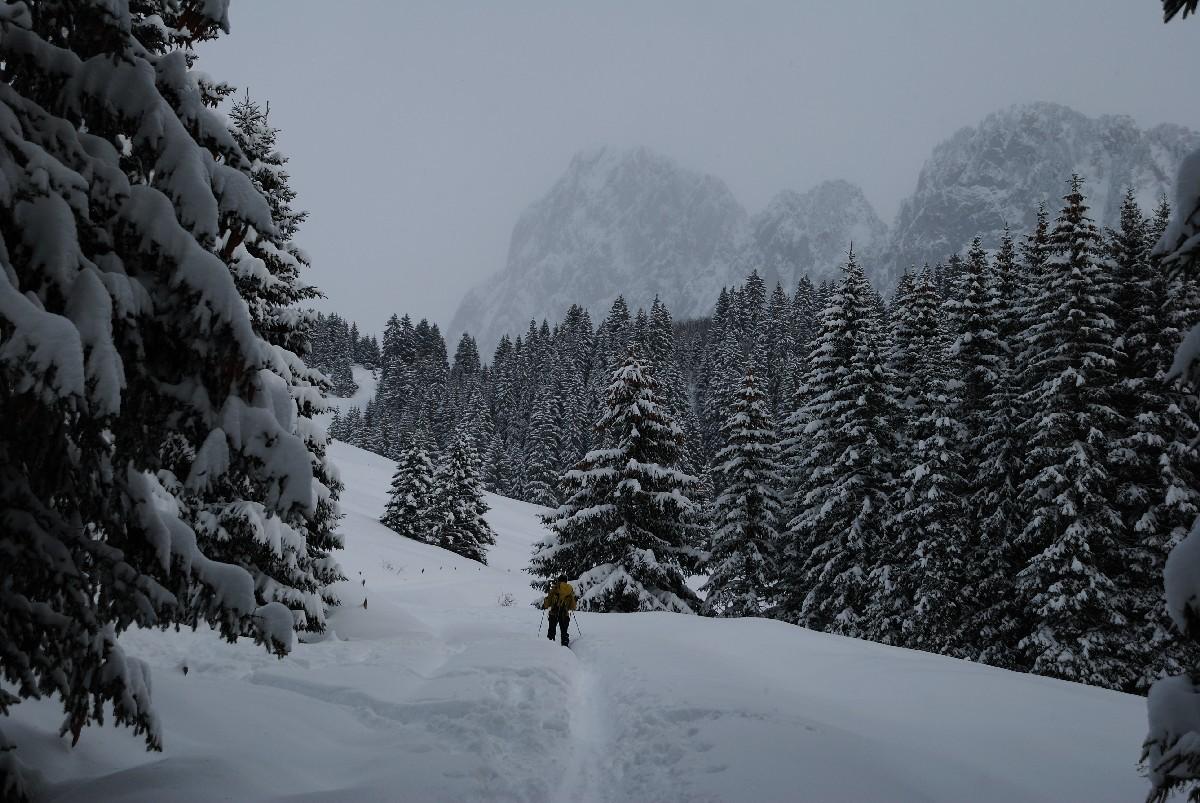 Remontée vers les Chalets d'Ubine, au fond le Mont Chauffé