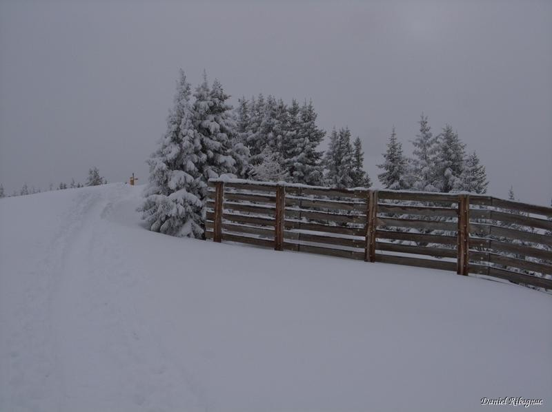 Le sommet (sur la gauche)  et les paravalanches du Mont de l'Arpille