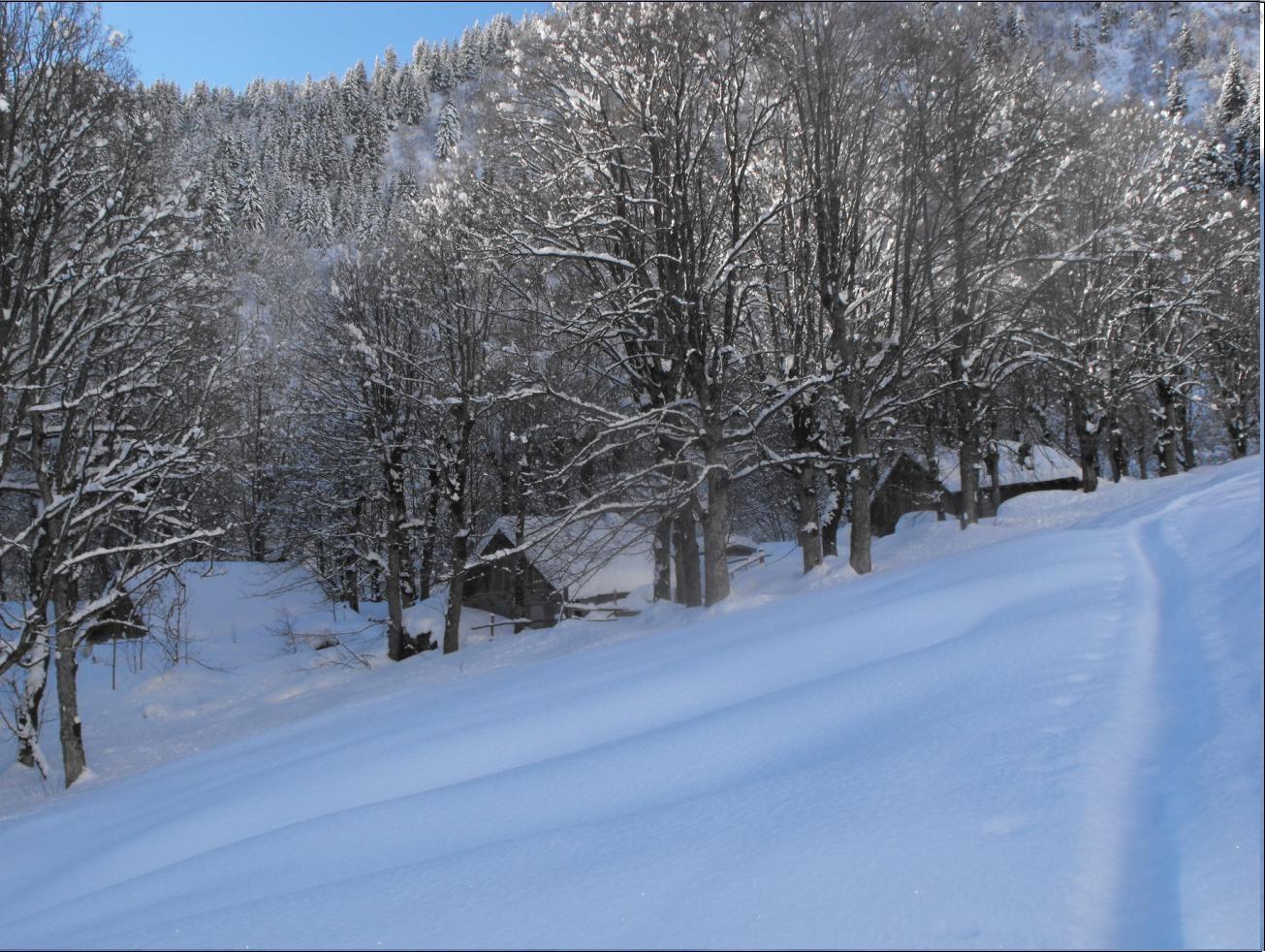 Hameau du Tepey