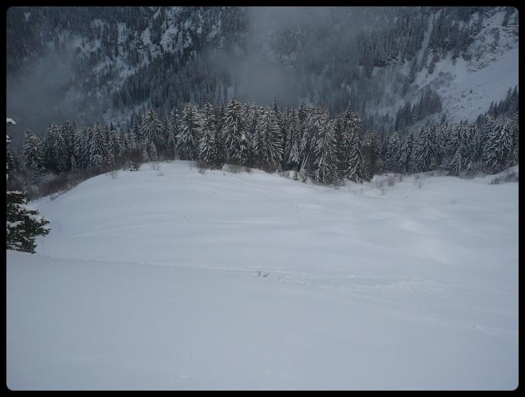 Une bonne partie de la face Est de la Tête des Follys: du bon ski mais on est vite dans la fôret!