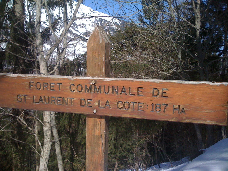 Entrée de la forêt de St Laurent