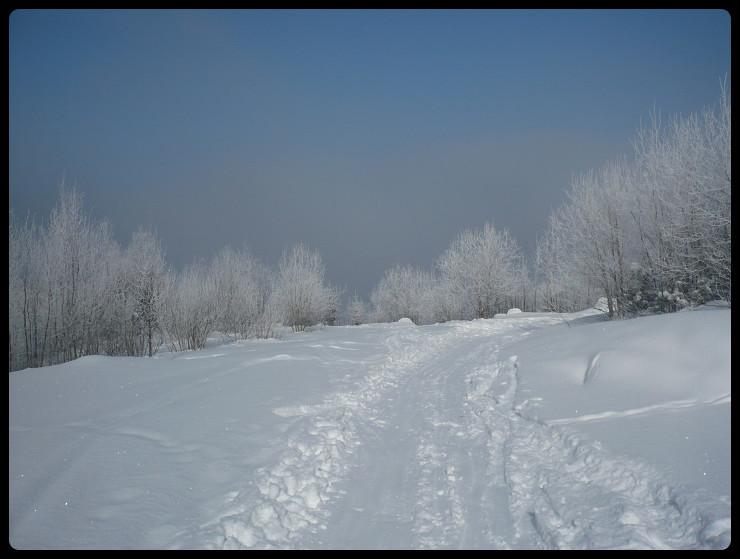 Au sortir de la fôret, décor sibérien