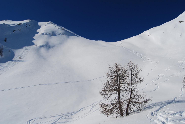 Il ripido e potezialmente pericoloso pendio E sottostante la Bocchetta della Maiona al Pizzo di Olano 2267 m.