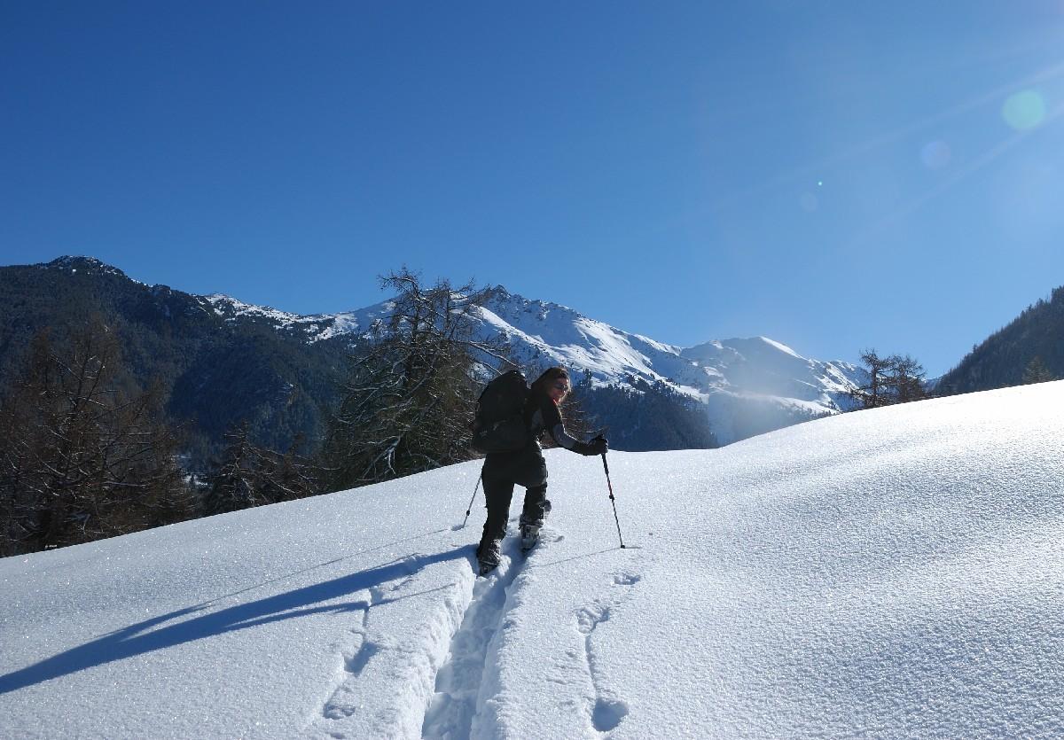 Alpage de Bouzerou, dans la montée à la Tour de Bonvin
