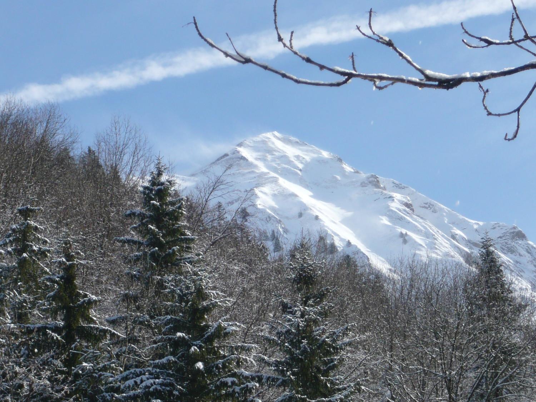 Mont Pécloz vue de la forêt