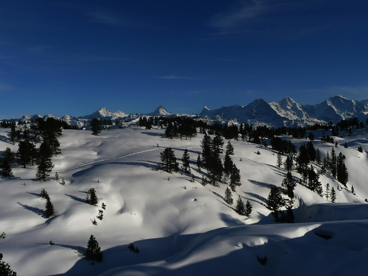 Lapiaz des Sieben Hengste, au fond les 4000m de l'Oberland
