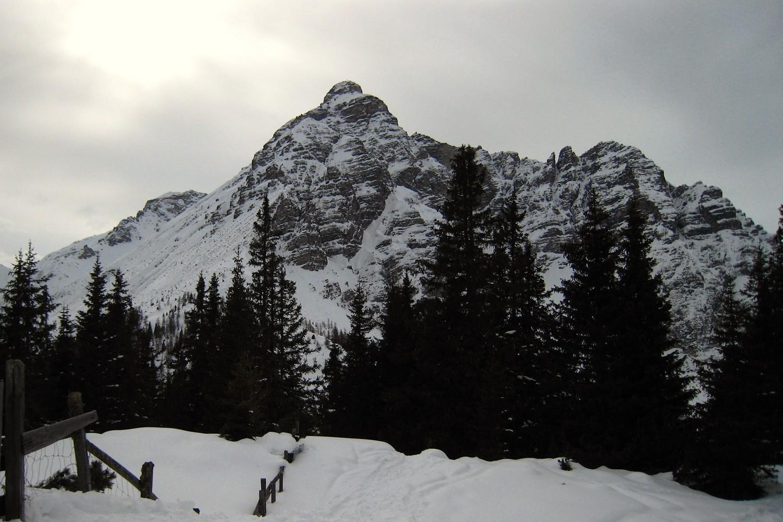 La face NE Serles (2717m) vue du Waldrasterjochl