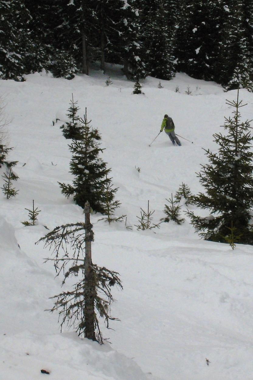 Agnès descend la clairière en versant N du Waldrasterjochl