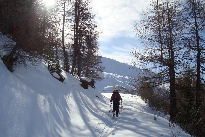 Ambiance sympa sur le chemin d'alpage...