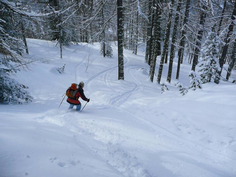 Bon ski dans le mélezin de Praroussin