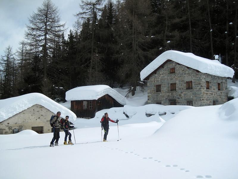 Alp Vartegna