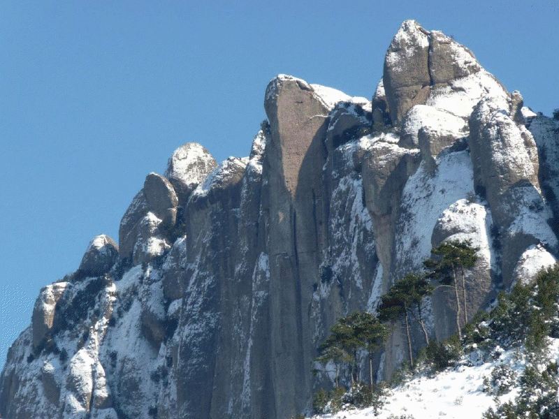 Montserrat nevat
