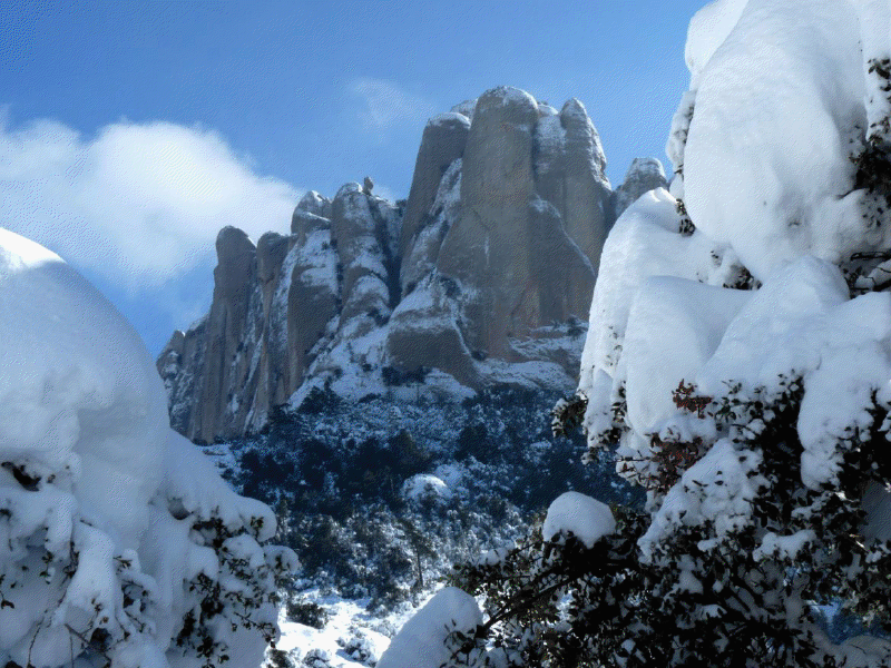 Montserrat nevat2