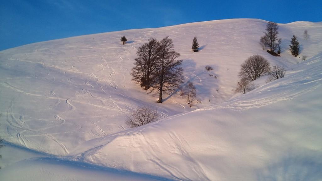 firma sulla neve