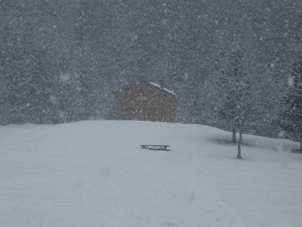 Refuge sous la neige