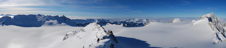 Il vasto Ghiacciaio dell'Adamello con le cime del Brenta a sinistra, fino all'Adamello a destra, visti dal Corno Bianco 3434 m.