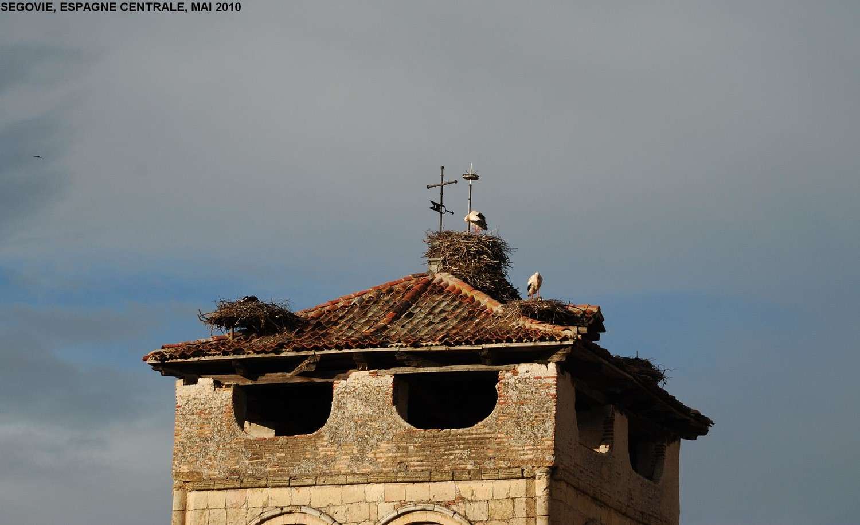 Eglise San Vicario (Segovie), cigognes