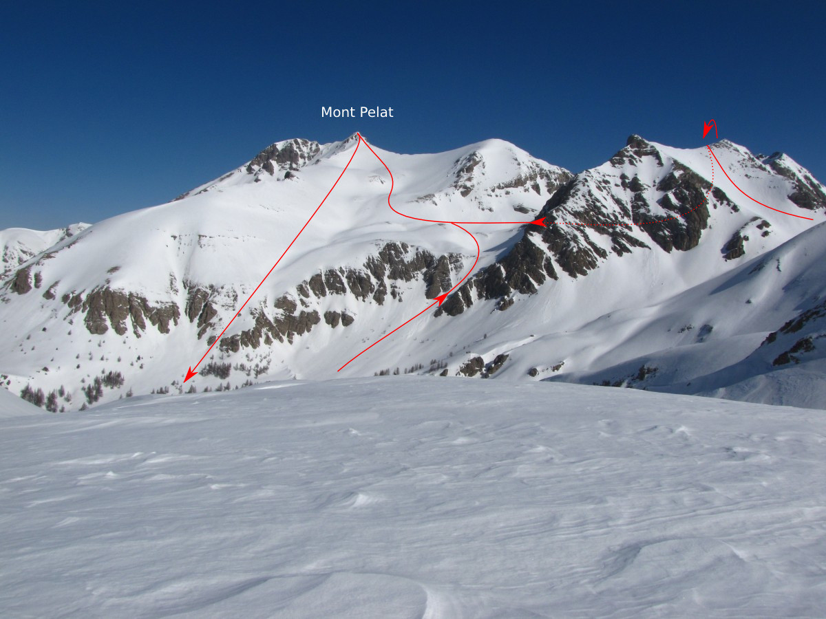 Versant S du Mont Pelat