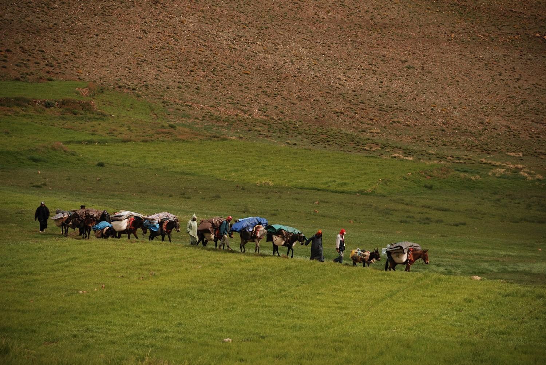 Entre les Bergerie d'Aziwan et Tachakocht, Djebel Sirouah , Anti-Atlas