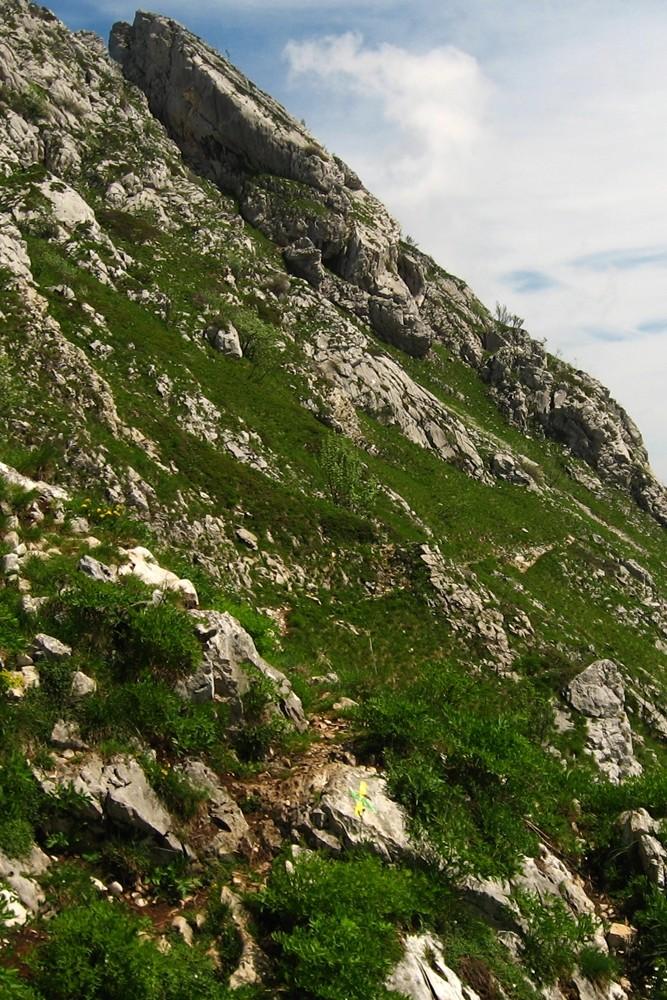 """du Col Vert, aller au-delà de la croix jaune et verte pour rejoindre le 'balcon E"""""""