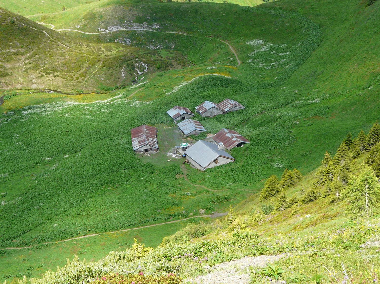 L'alpage de Catogne au pied de la Croix de Fer (Trient)