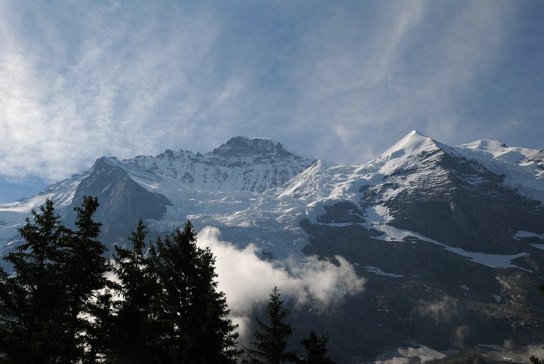 Jungfrau et Silberhorn vus de Biglenalp