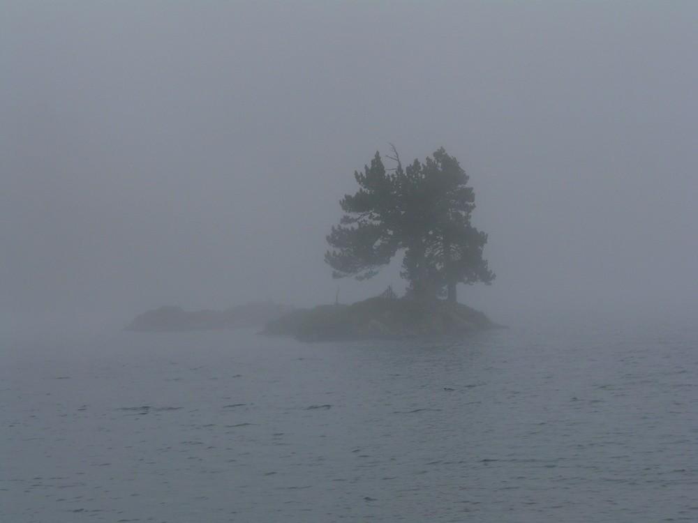 Brouillard sur l'étang Romedo de Dalt