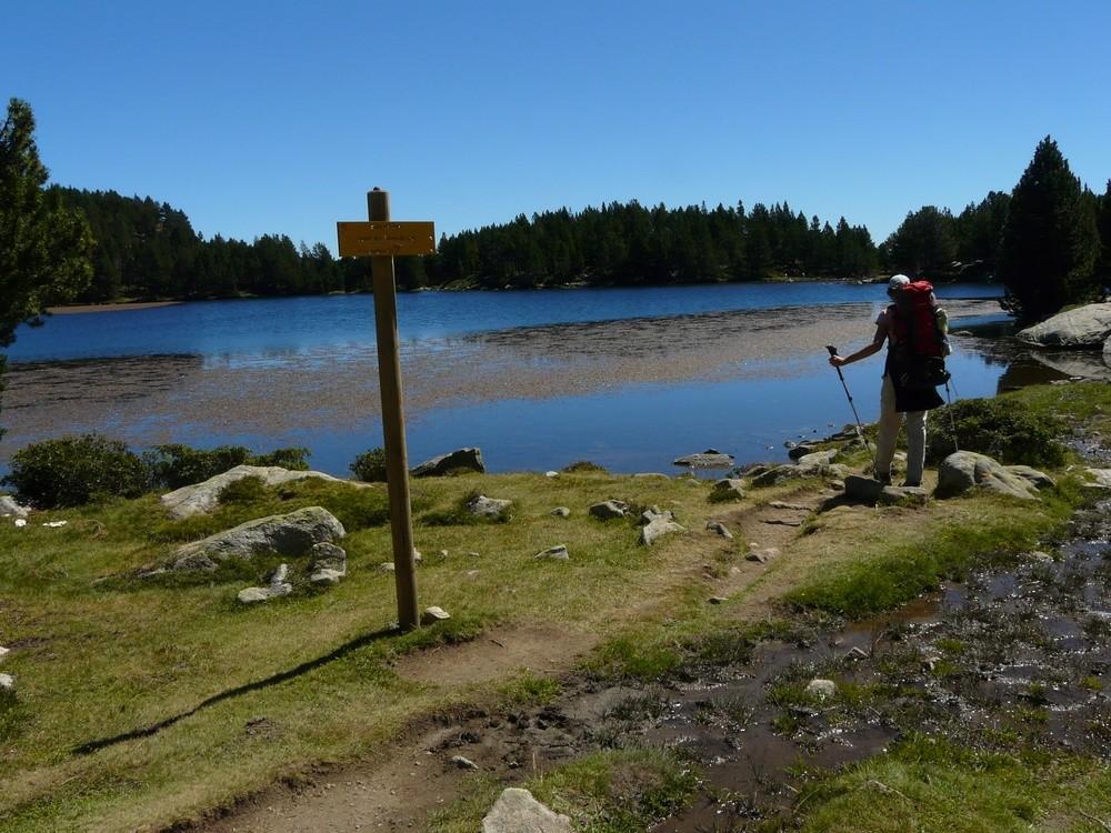 Au bord de l'étang des Dugues