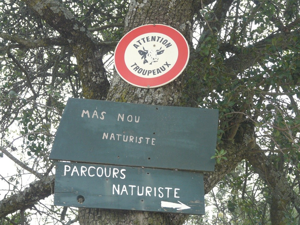 Attention troupeaux, de naturistes?