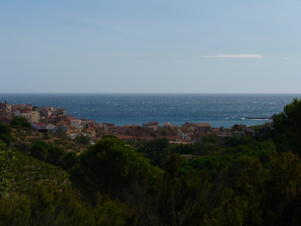 Banyuls