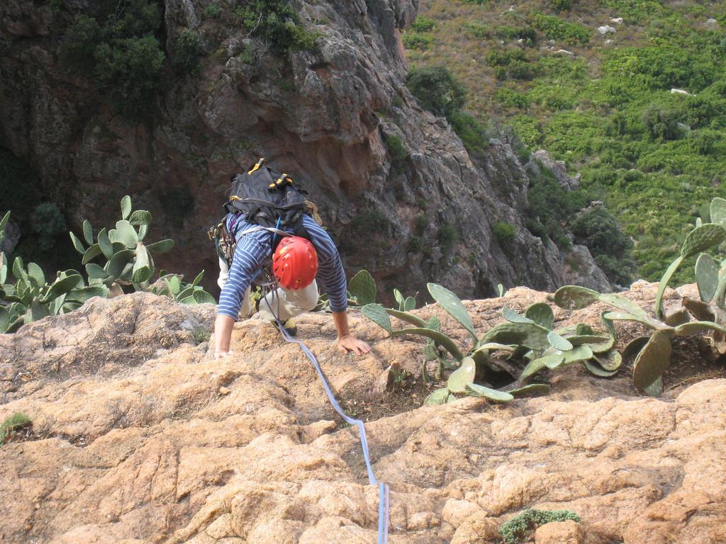 L5, gare aux cactus !