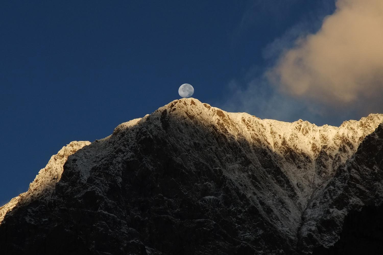 Moon bilboquet