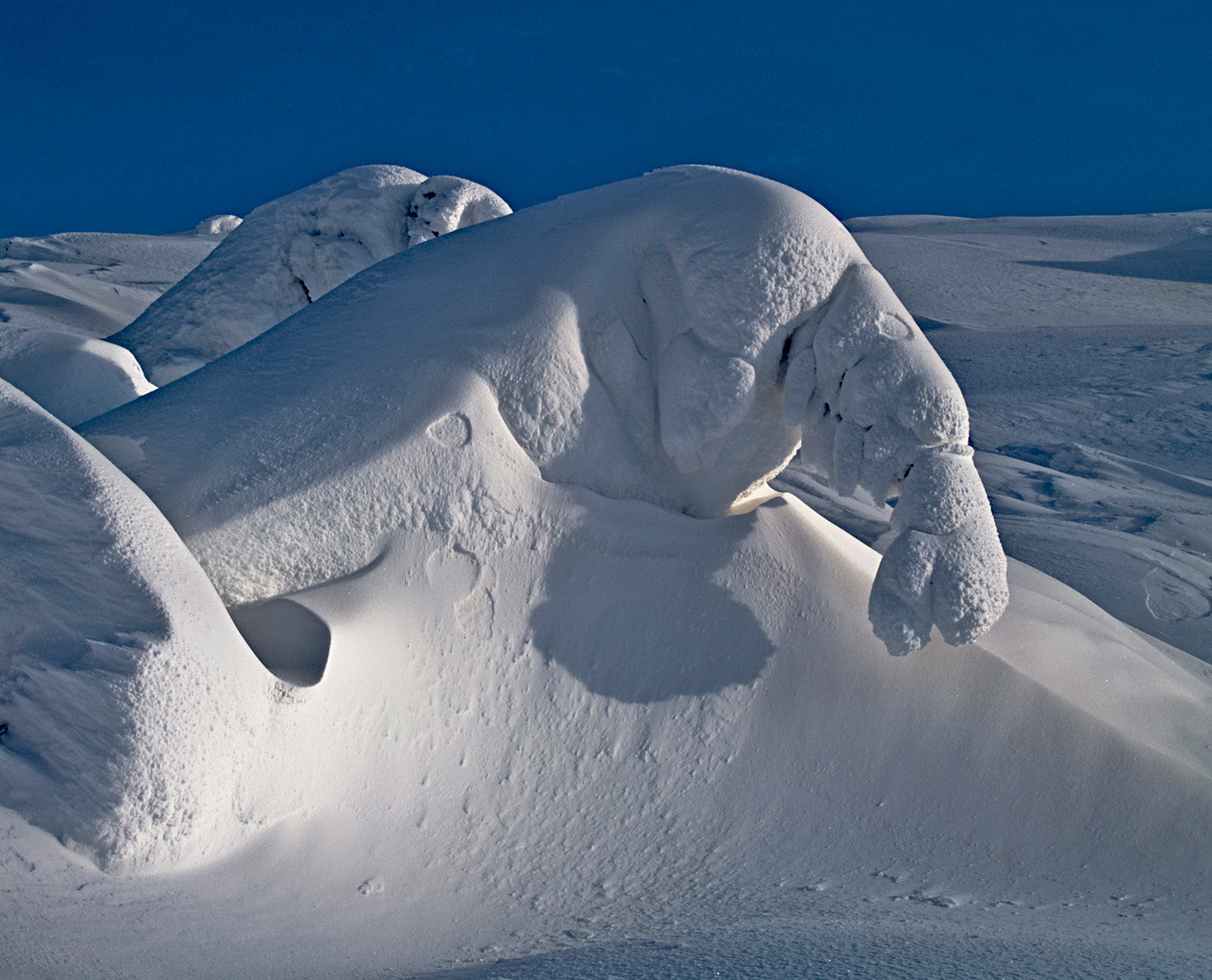le monstre des neiges    Whitepass Alaska
