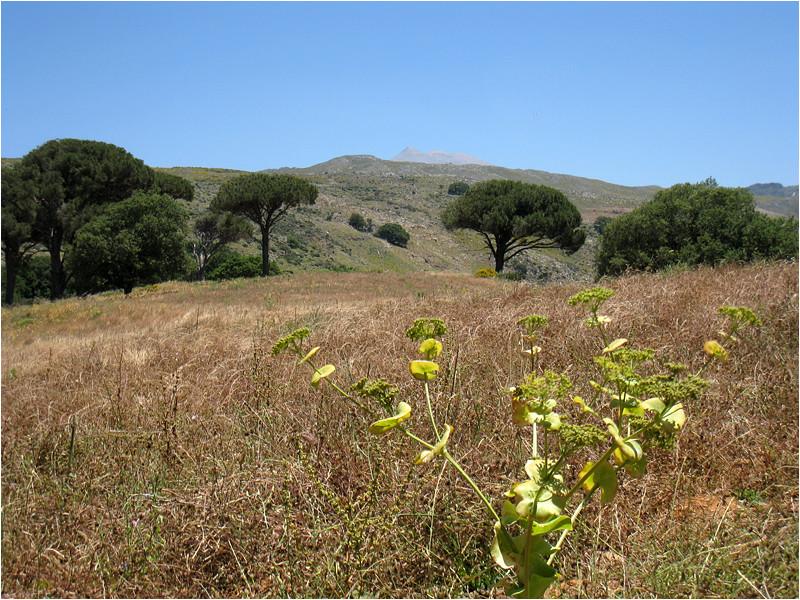 Mont Psiloritis