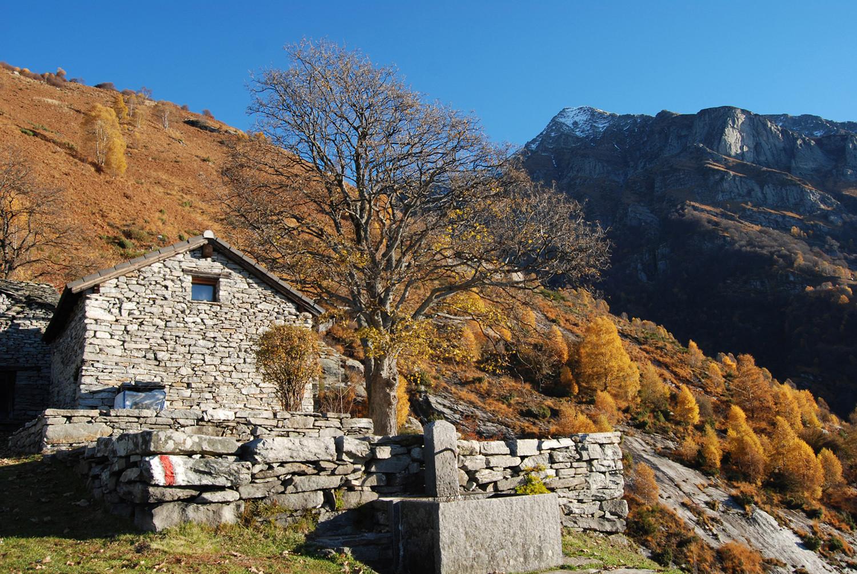 Le baite di Corte Nuovo 1250 m, con il Pizzo di Vogorno 2442 m.