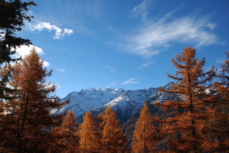 Vue sur le Balfrin depuis l'alpage d'Oberfinilu