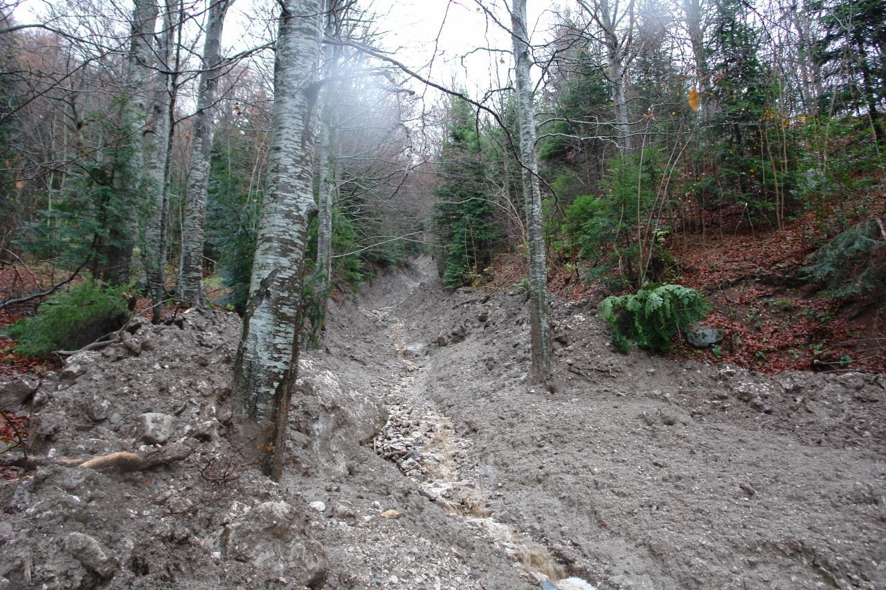 coulée de boue - couloir venant du Pas des Terreaux
