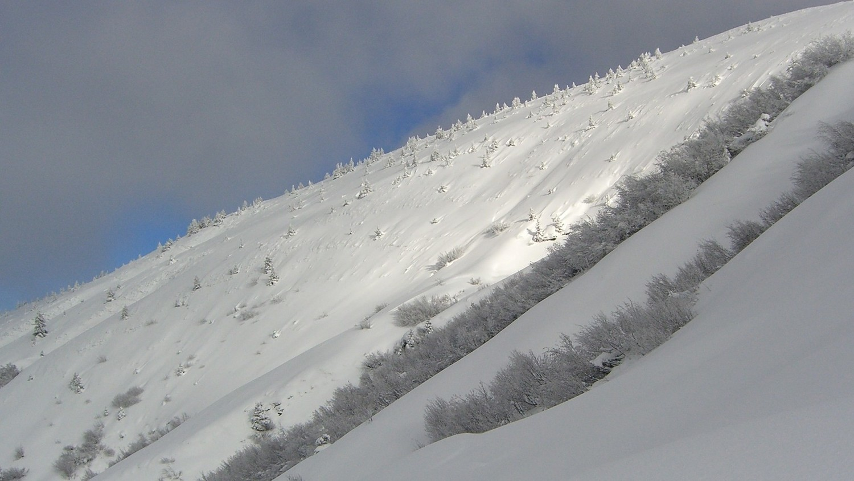 C Baulet-comme en hiver